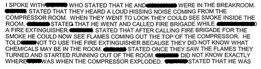 Police report summary of witness statement